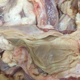 Мясо пищевода (говядина)